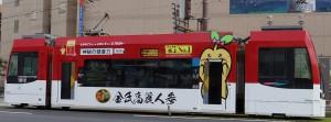 金氏高麗人参2号[1]